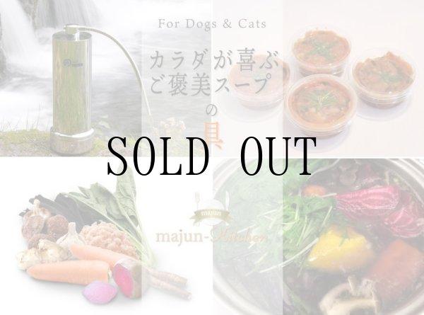 画像1: 【冷】カラダが喜ぶご褒美スープの具(4個入り) (1)