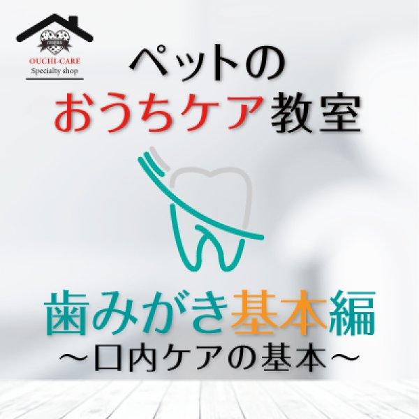 画像1: ペットのおうちケア教室《歯みがき基本編》〜ペットの口内ケアの基本〜 (1)