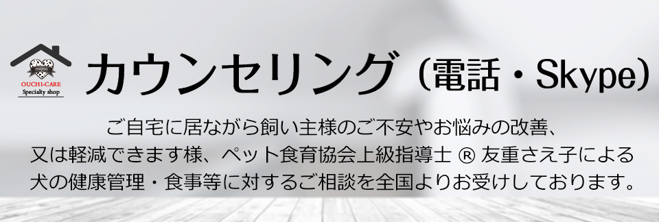 電話・ビデオチャット相談(有料)
