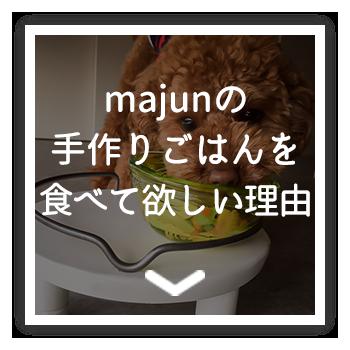 Majunの手作りごはんを食べて欲しい理由